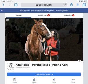Funpage Facebook