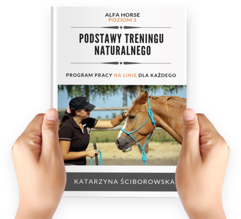e-book_podstawy_treningu_naturanlnego_27