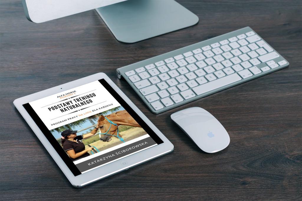 e-book_podstawy_treningu_naturanlnego_20