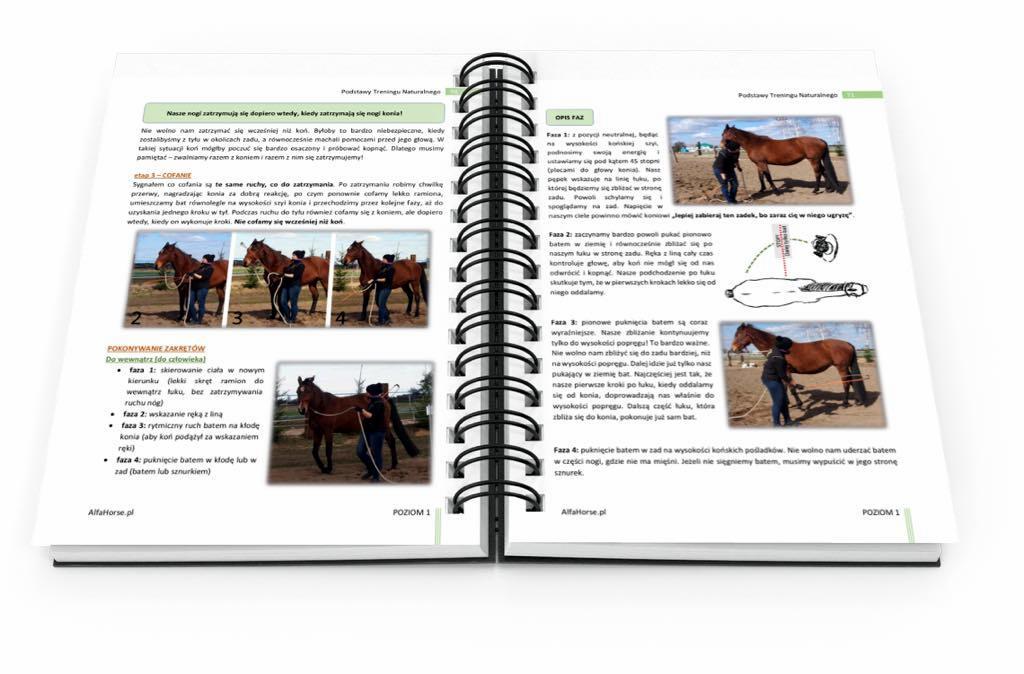 e-book_podstawy_treningu_naturanlnego_5