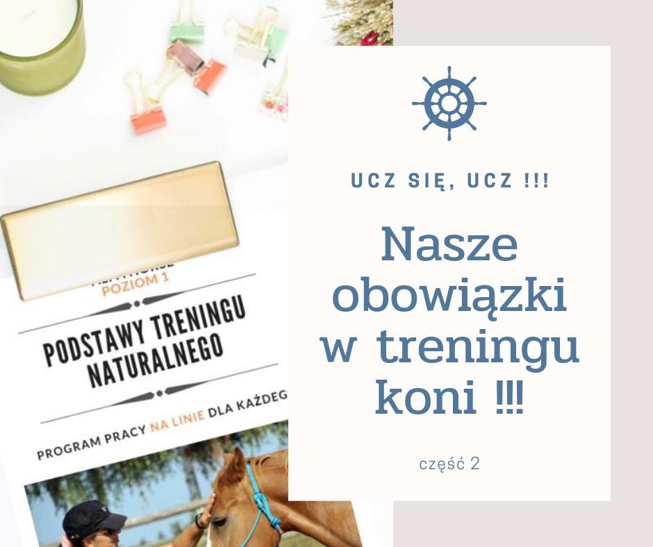 obowiazki_w_treningu_koni_czlowiek