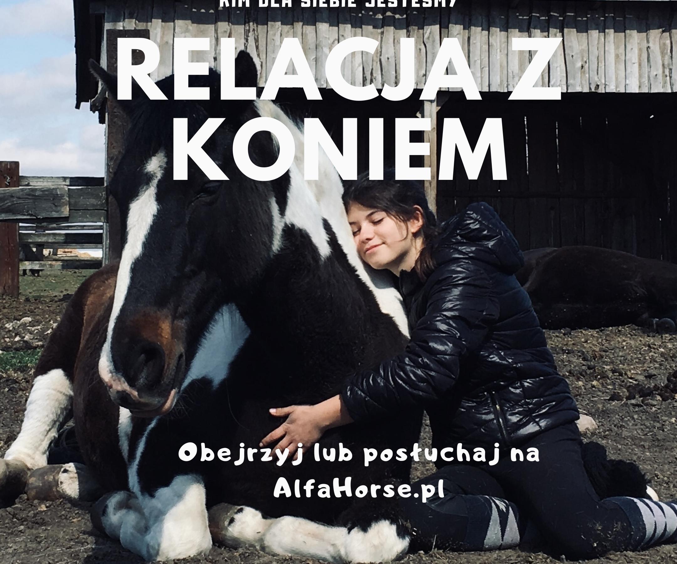 relacja_konie-trening