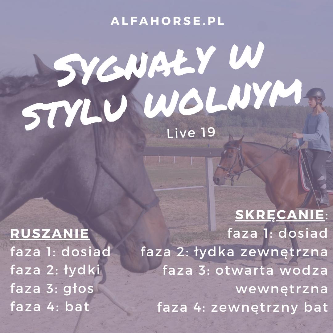 jazda_konna_styl_wolny