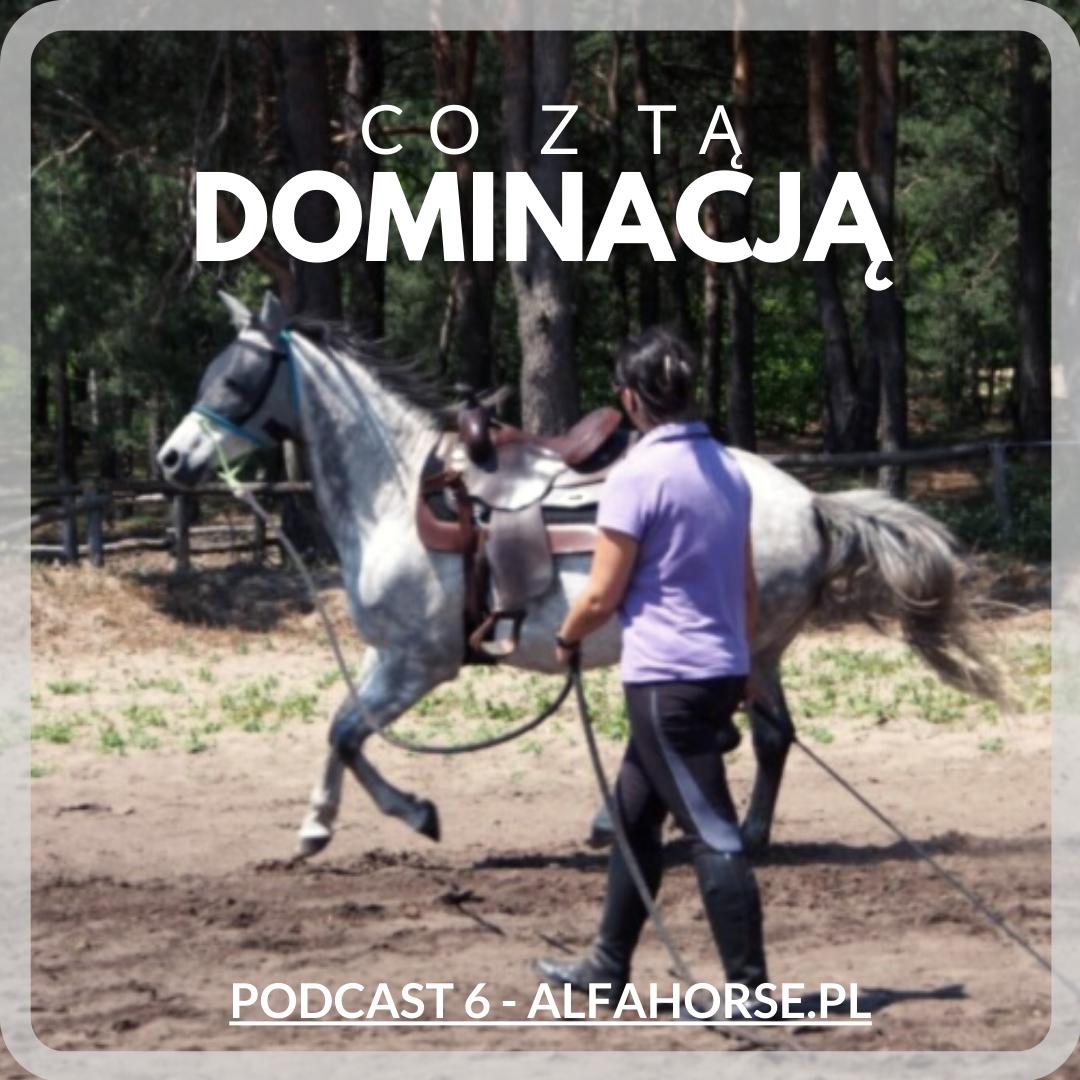 dominacja_trening_koni_agresja_podcast