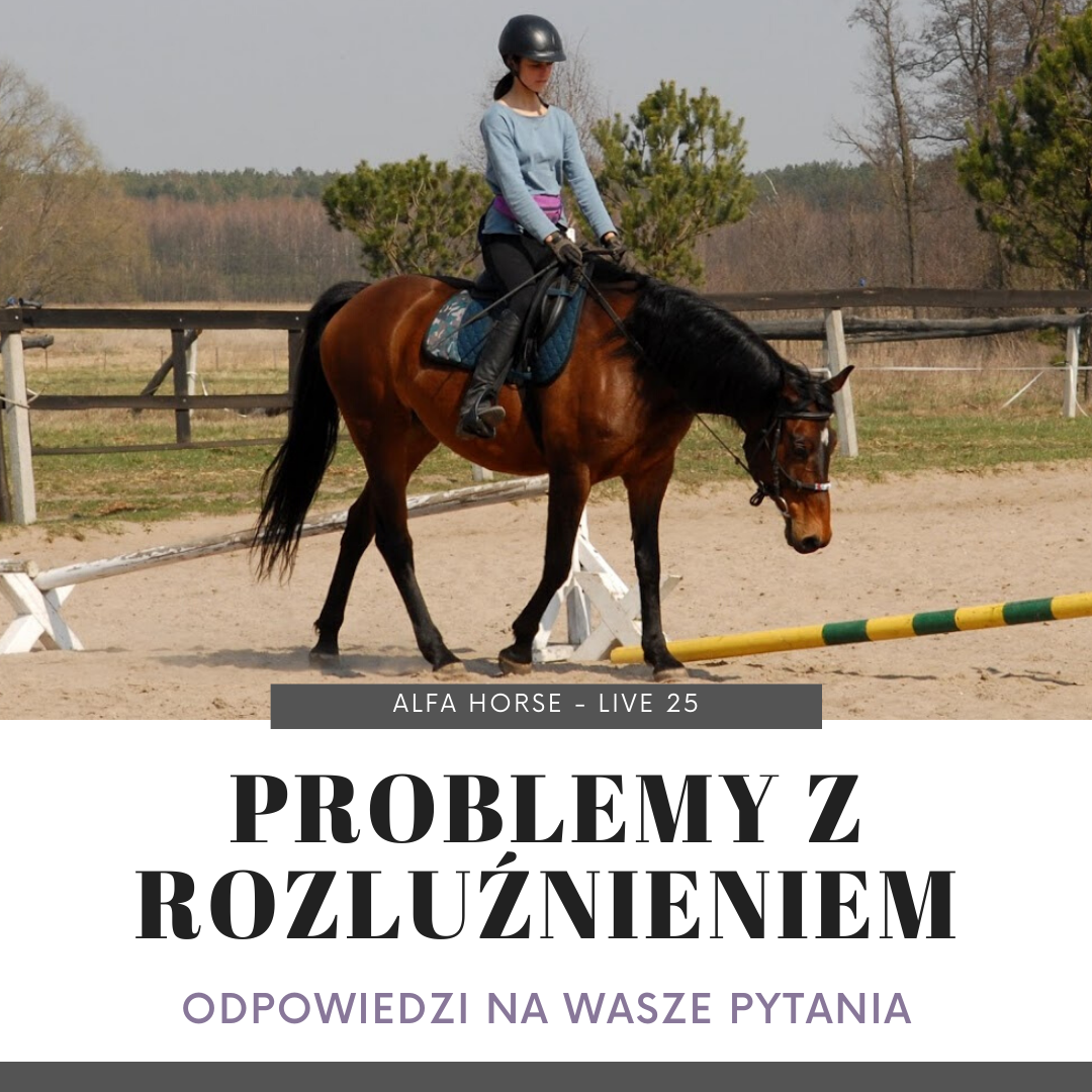 kon_rozluznienie_problemy_trening