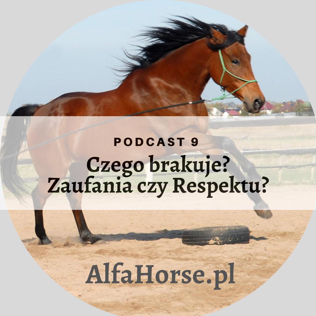 podcast_trening_koni_zaufanie_respekt_braki