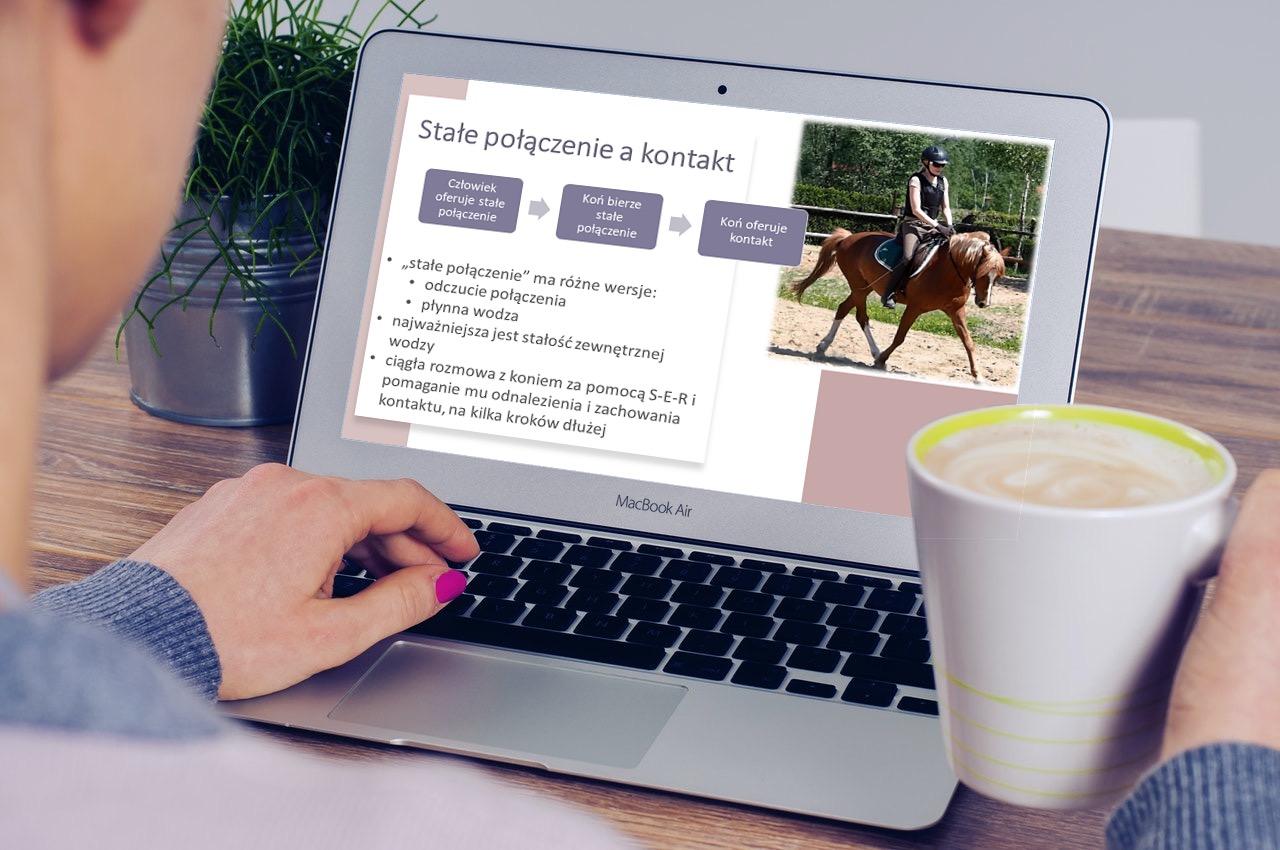 konie_trening_rownowaga_kontakt_elastycznosc_2
