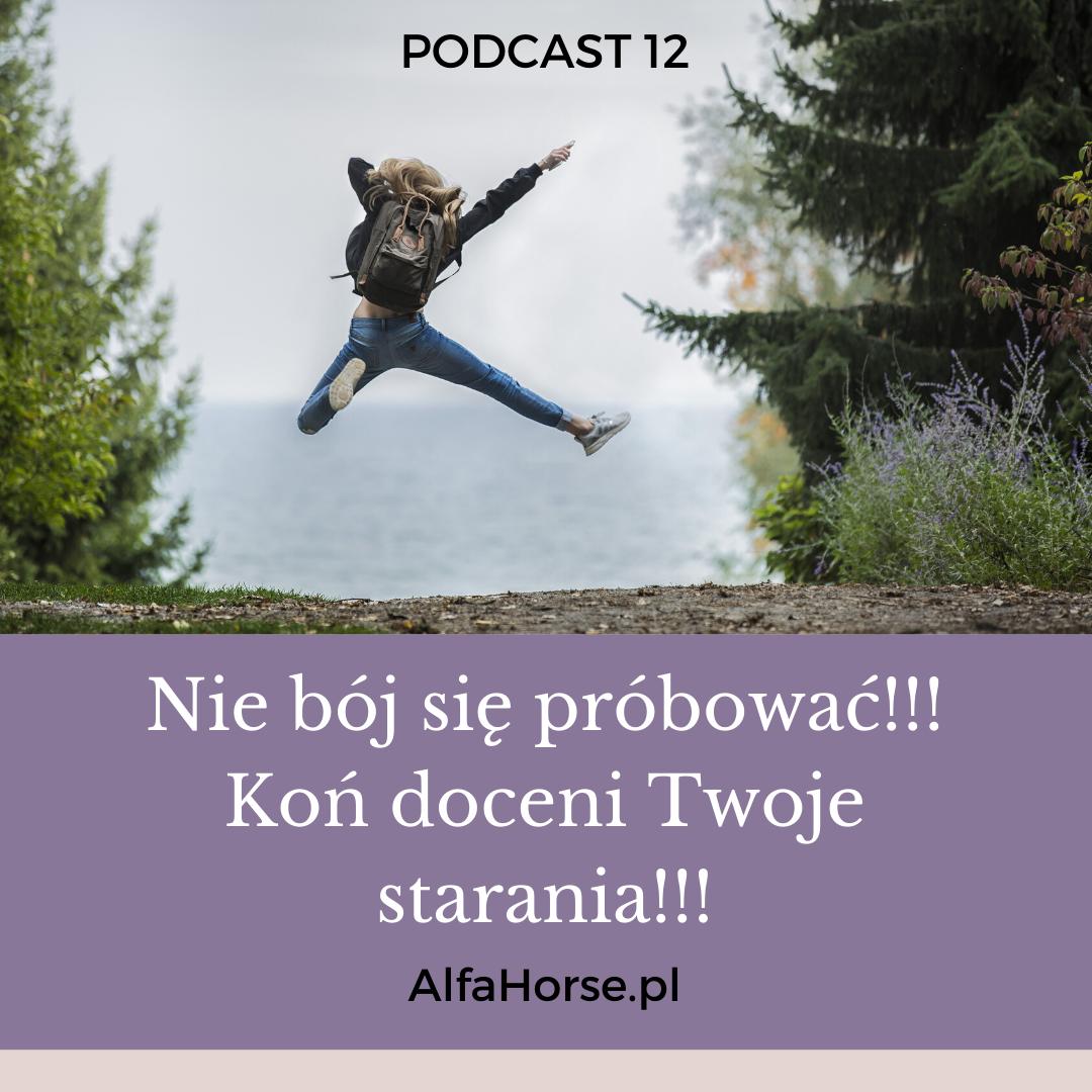 konie_nie_boj_strach_probowac