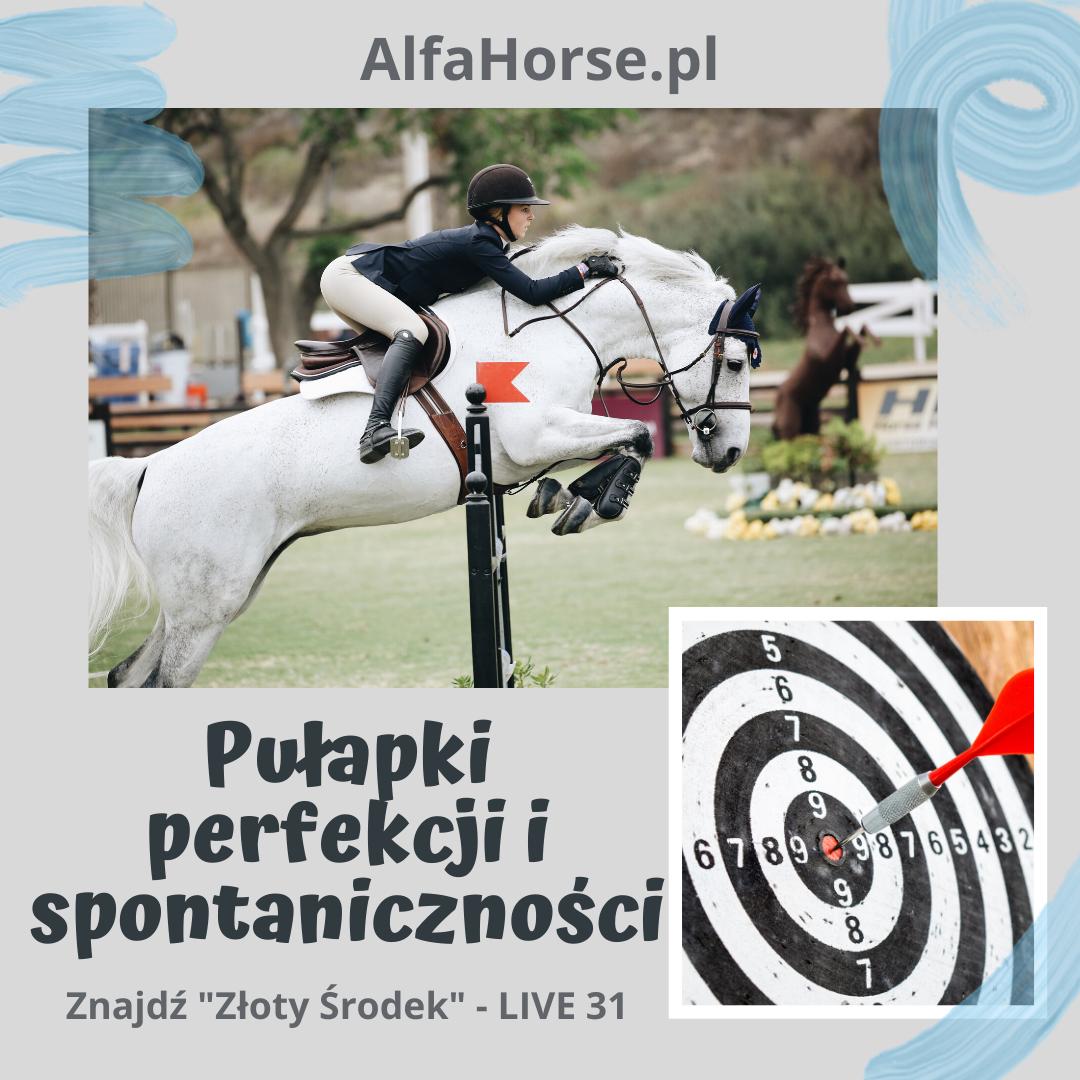 perfekcja_spontaniczność_trening_koni