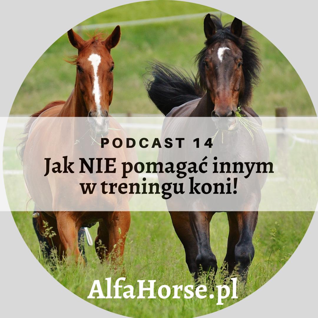 podcast_musze_pomoc_trening_koni
