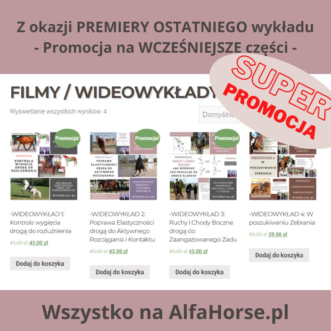 promocja_wyklady_gimnastyka