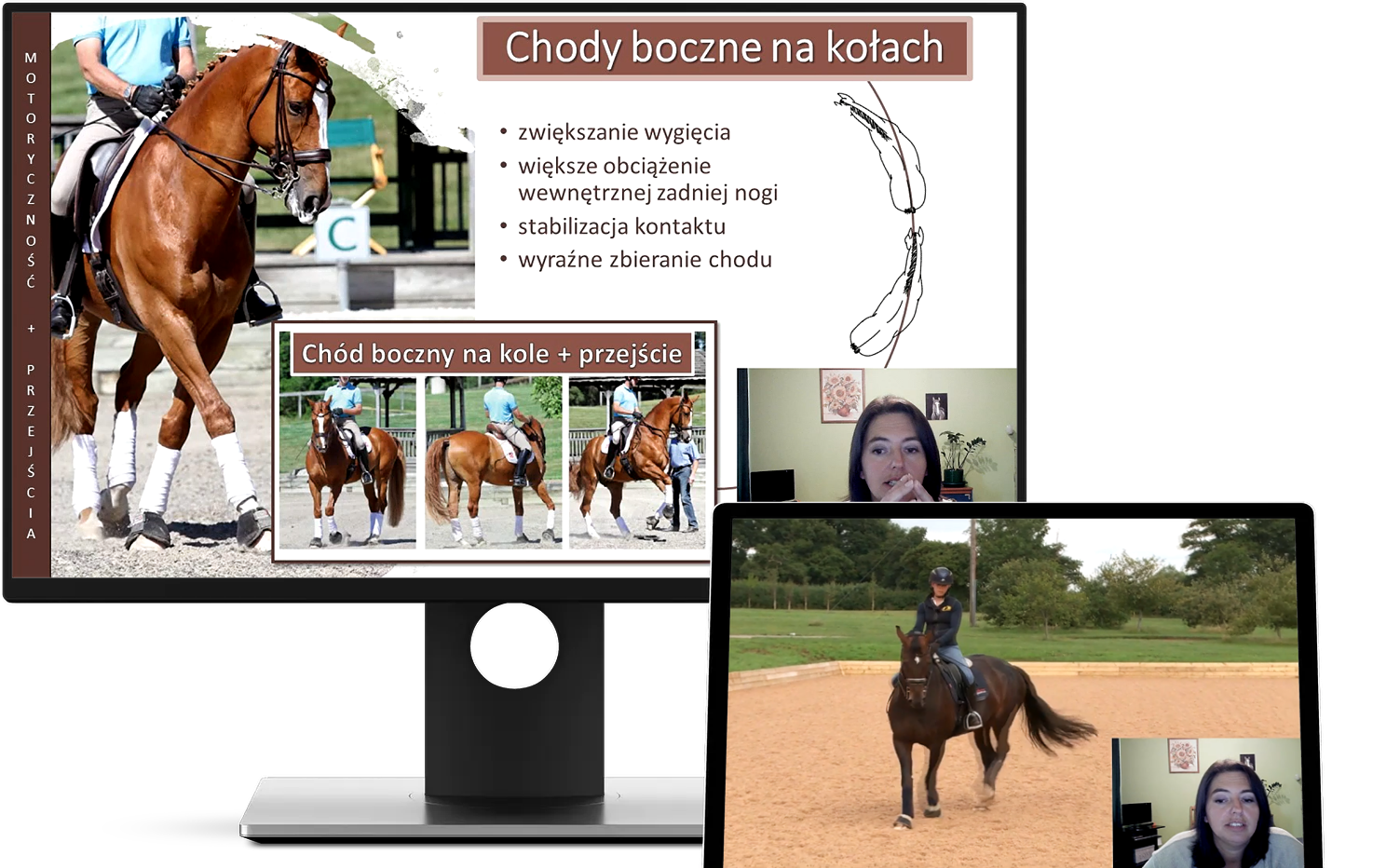alfahorse_trening_konia_zebranie_wyklad_23
