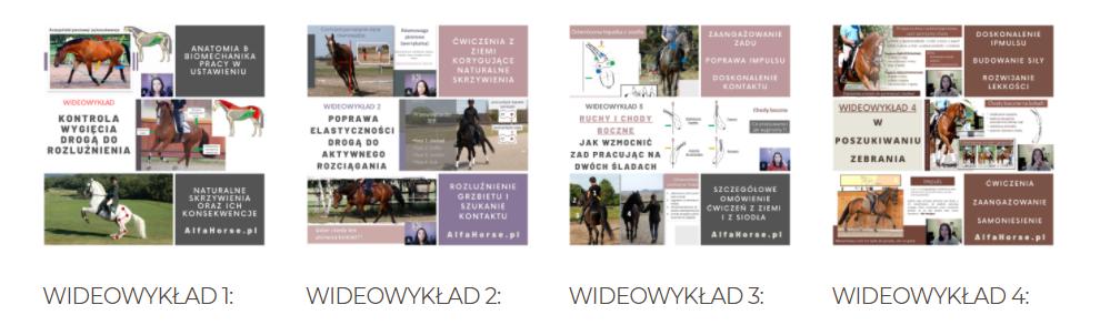 wideowykłady_trening_koni_gimnastyka_ujezdzenie