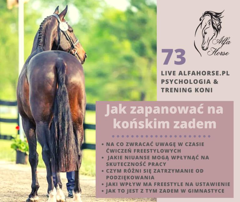 live_73_jak_zapanowac_nad_konskim_zadem_naturalny_trening_koni
