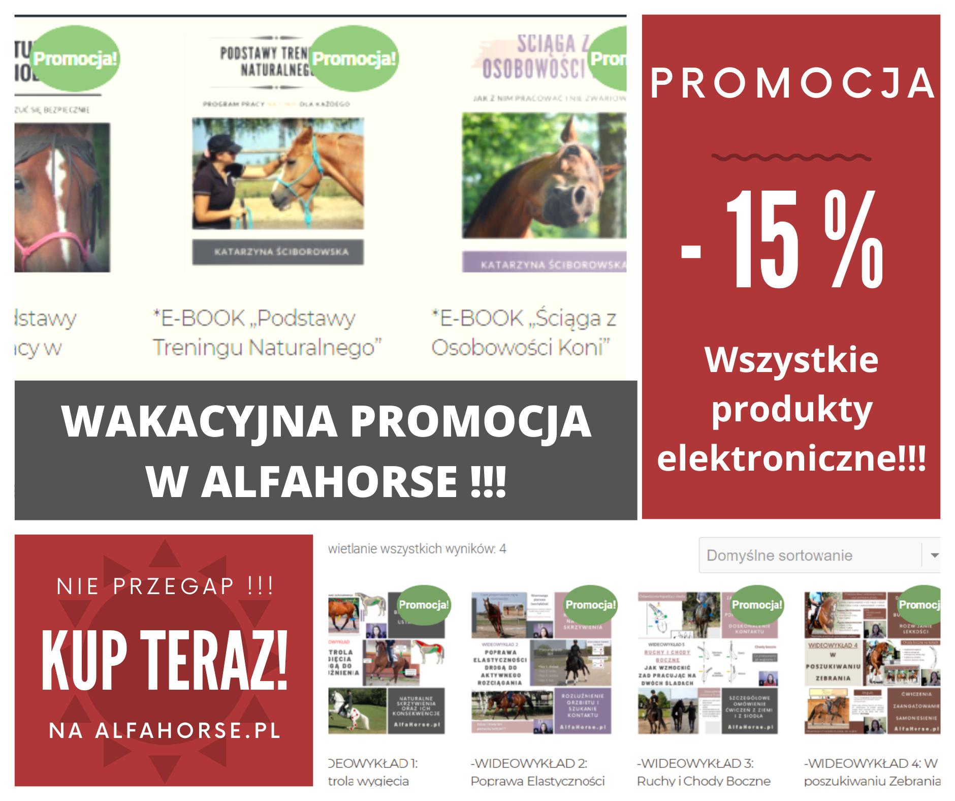 trening_koni_promocja1