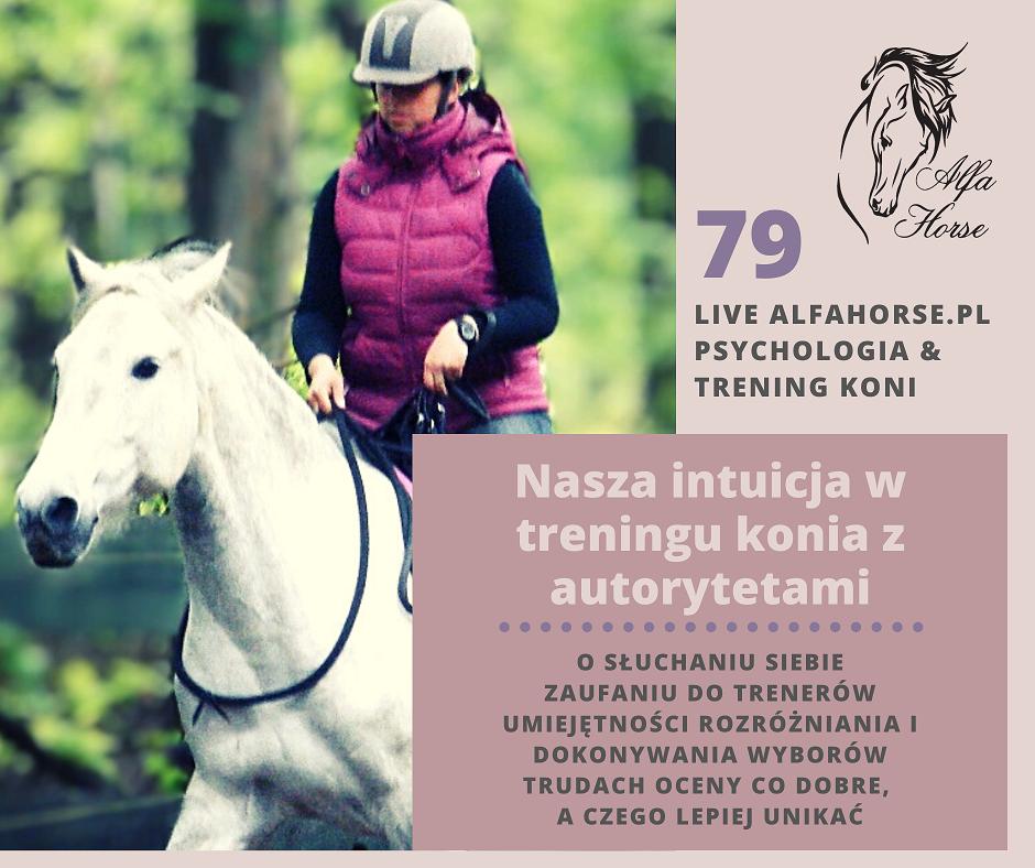 live_79_nasza_intuicja_w_treningu_koni_z_autorytetami