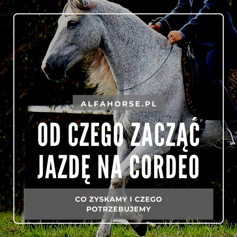 od_czego_zaczac_jazde_na_cordeo